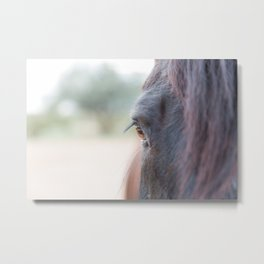 The mirror of the soul Metal Print