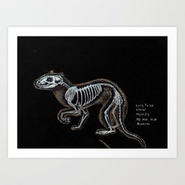 Weasel Skeleton Art Print