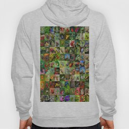 Frogs Montage Hoody