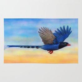 Taiwan Blue Magpies (2) Rug