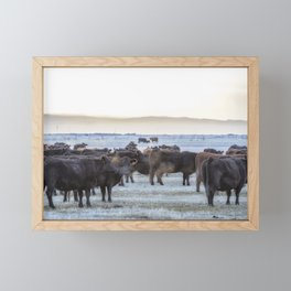 Good Morning Cows Framed Mini Art Print