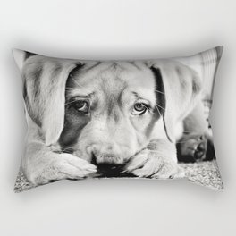 Ryder Rectangular Pillow