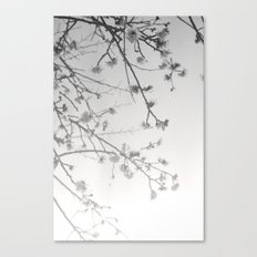 Rising Dawn Canvas Print