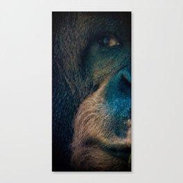 The Shy Orangutan Canvas Print