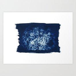 "Cyanotype on Paper ""CHARDON"" Art Print"