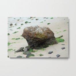 Stone On The Shore Metal Print
