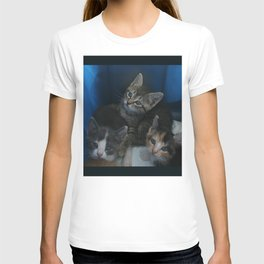 1, 2 & 3 of 8 DPG150830a T-shirt