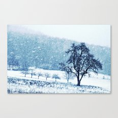 Old pear tree (cool edition) Canvas Print