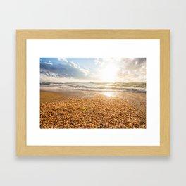 Sunset Cockleshell Framed Art Print