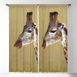 Giraffe Portrait Close up 1 Blackout Curtain