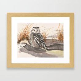 sleepy snow owl Framed Art Print