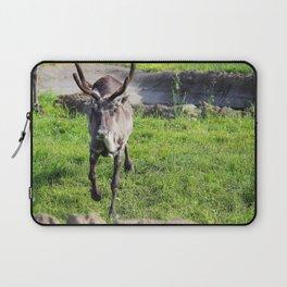 Caribou 1 Laptop Sleeve
