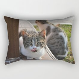 Led Astray Rectangular Pillow