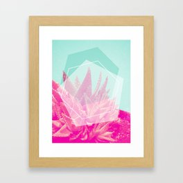 Aloe Veradream Framed Art Print