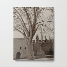 "Gardens (tree) to the NE of Sultan Ahmed Mosque (""Blue Mosque"", Istanbul, TURKEY) Metal Print"