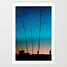 Arizona Desert Sunset  Art Print