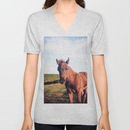 Dartmoor Pony Portrait Unisex V-Neck