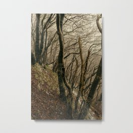 ENCHANTED FOREST / 02 Metal Print