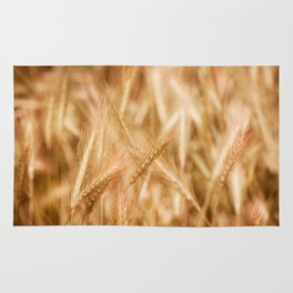 Golden ripe cereal ears grow on field Rug