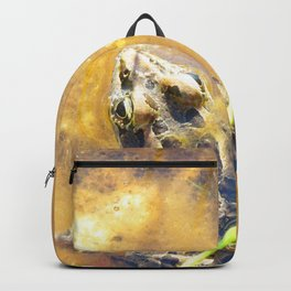 Watercolor Frog, Pickerel Frog 09, Kejimkujik, Nova Scotia, Canada, In the Open Backpack