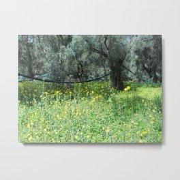 Taraxacum and olive Metal Print
