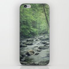 Misty Forest Stream iPhone & iPod Skin