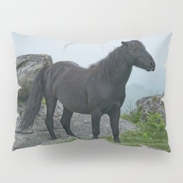 Dartmoor Heritage Pony Pillow Sham