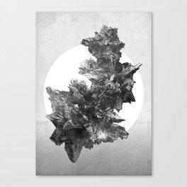 Asteroids sculpture Canvas Print