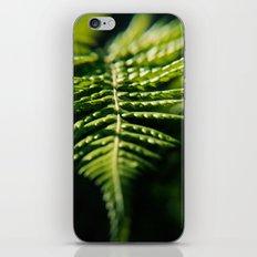 Fern - Macro iPhone & iPod Skin