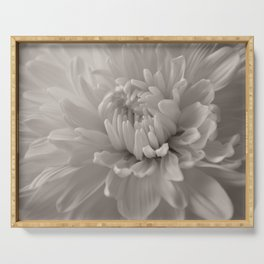 Monochrome chrysanthemum close-up Serving Tray