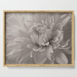 Monochrome chrysanthemum close-up Serving Tray
