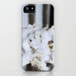 Snowy Shrine Rope iPhone Case