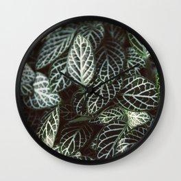 Botanical Gardens Zebra Leaf #398 Wall Clock