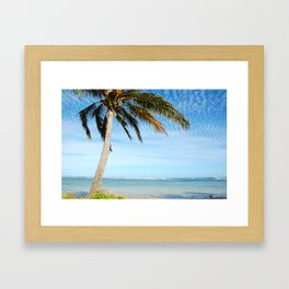 Palm tree in the wind.. Framed Art Print