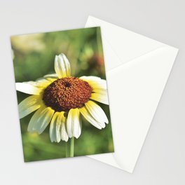Margarite Stationery Cards