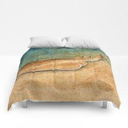 Chesapeake Bay Skate Comforters