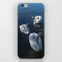 White Swans Trio iPhone Skin