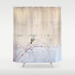 """Pretty Kingbird"" by Murray Bolesta Shower Curtain"