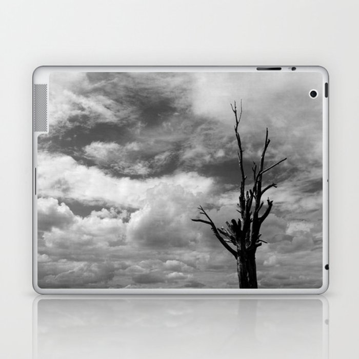 Nature in black and white ~ 3 Laptop & iPad Skin