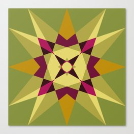 Star it out Canvas Print