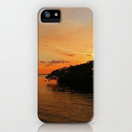 Secrets and Intrigue iPhone Case