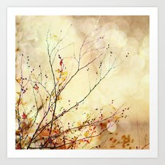 Autumnal Bliss  Art Print