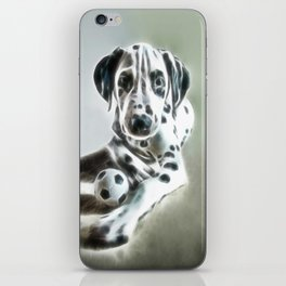 brothers in colors iPhone Skin