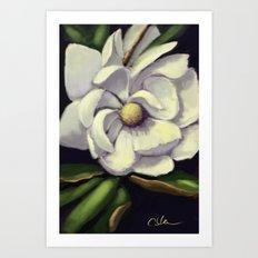 A Cooler Magnolia DP160918a Art Print