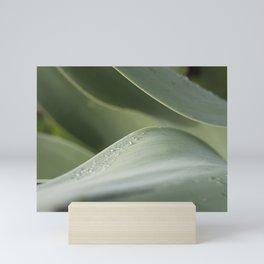 Agave study Mini Art Print