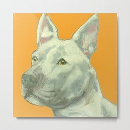 Pittbull printed from an original painting by Jiri Bures Metal Print