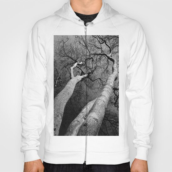 Monochrome Trees Hoody