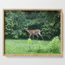 Caught Unaware (Deer) Serving Tray