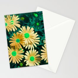 Floral Background, Purple Marquerite Daisy, Felicia amelloides, Yellow Kapaster. Multicolor spring Stationery Cards