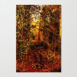 Winter forest stream Canvas Print